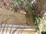 Earthquake: Cedro Abajo Puerto Rico,  January 2020